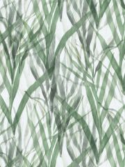BOTANICAL-GRASS-T 18