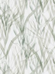 BOTANICAL-GRASS-U 76